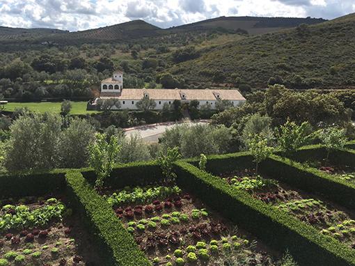 huertos frente a hacienda la magdalena